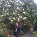 Noeleene with a fantastic rhododendron