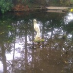 Arduaine stone heron